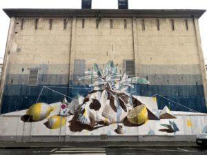 Ratur | Still life | Le Havre | 2020
